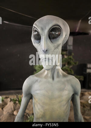 Alien mannequin, UFO Museum, Roswell, New Mexico. - Stock Photo