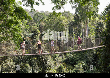 People on the 40 metre high Canopy Walkway at Kakum National Park, Ghana - Stock Photo
