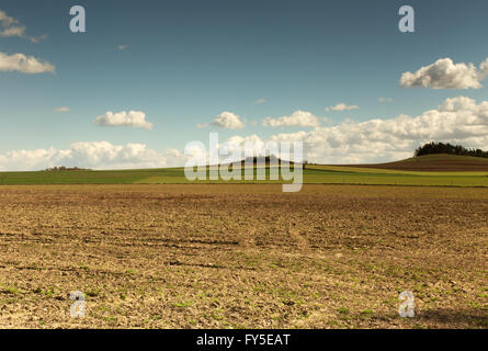 Poland,photo of beautiful landscape with plowed field,green winter corn and hill in background under blu sky with - Stock Photo