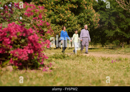 Grandparents enjoying their retirement: Senior woman and old man spending time with their grandson in park. The - Stock Photo