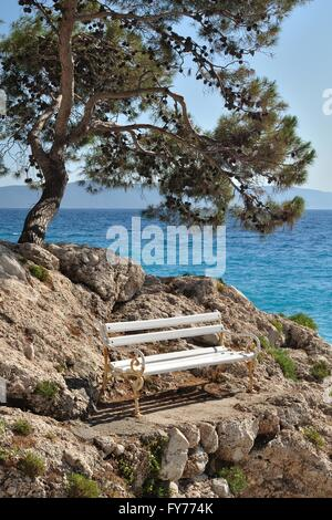 White bench on stones under the tree, with sea in background. Podgora, Croatia - Stock Photo