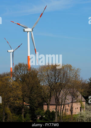 Large windmills with blue sky at Dutch-Belgian border near Hazeldonk, with old house very close - Stock Photo