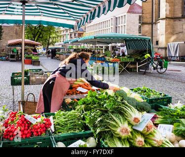 Woman trader selling fresh produce at farmers market stall on Schillerplatz, Stuttgart, Baden-Württemberg, Germany - Stock Photo