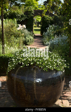the white garden sissinghurst kent stock photo royalty free image 9690489 alamy. Black Bedroom Furniture Sets. Home Design Ideas