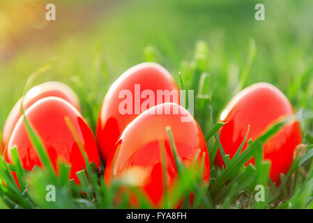 Red Easter Eggs in green grass in spring - Stock Photo