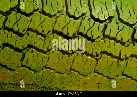Cheerful image of an automobile tire with relation to green technologies or ecological issues. - Stock Photo