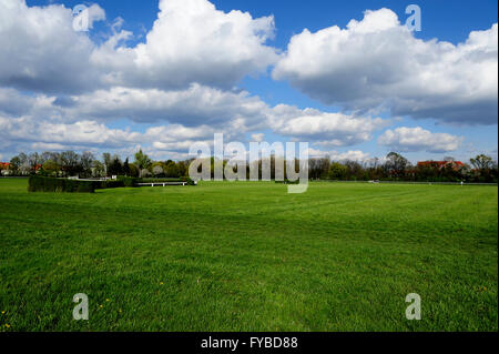 Racing, horse, Partynice Wroclaw, Poland, Open Season 2016, wroclaw, dolnoslaskie, partynice, poland, europe, 24 - Stock Photo