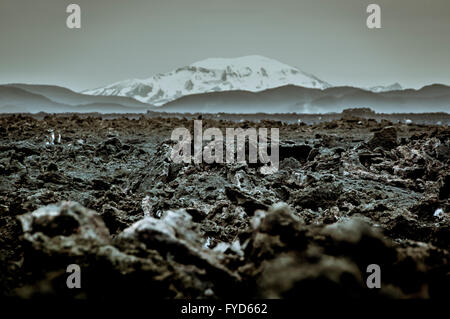 Holuhraun. Large lava field just north of the Vatnajökull ice cap, in the Icelandic Highlands, in Suð - Stock Photo