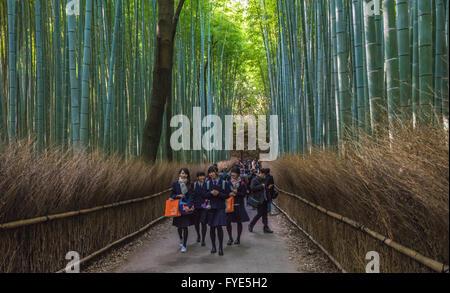 KYOTO, JAPAN - November, 18, 2014: Japanese schoolchildren at Bamboo grove in Arashiyama, Kyoto, Japan - Stock Photo
