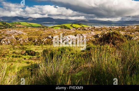View over Ardgroom, Beara Peninsula, County Cork, Ireland, across Kenmare Bay to the mountains of the Iveragh Peninsula - Stock Photo