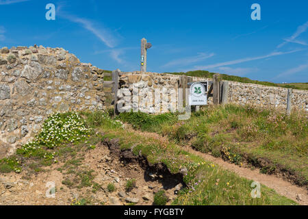 Deer Park near Martins Haven - Pembrokeshire - Stock Photo