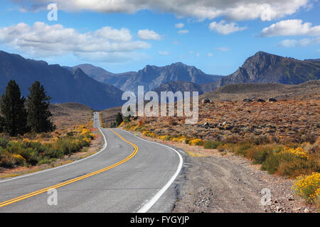 The road went off through the beautiful desert - Stock Photo