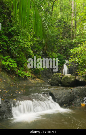 Waterfalls on small stream, Mt. Tompotika Forest Reserve, Mt. Tompotika, Central Sulawesi, Indonesia - Stock Photo