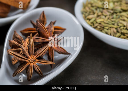 Star Anise in White Spoon with other components of Chinese five spice in background - Stock Photo