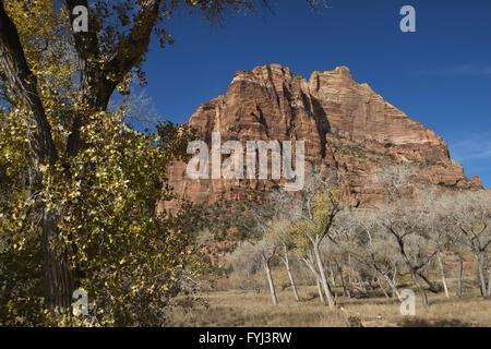 Zion Nationalpark - Stock Photo
