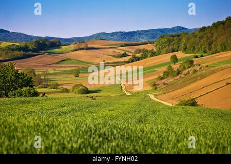 Idyllic springtime landscape view of fields and meadows in Prigorje region of Croatia - Stock Photo