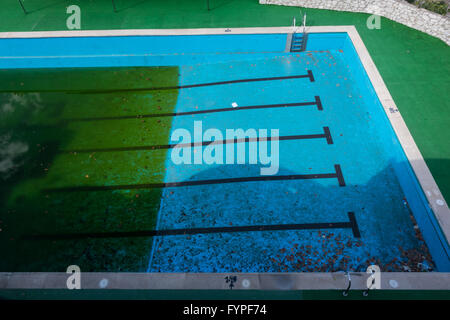 Green algae growing in neglected swimming pool - Stock Photo