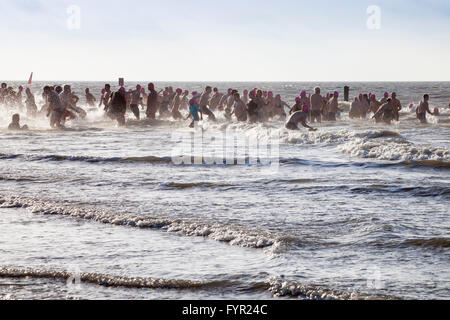 Traditional 'Anbaden', the first dip of the year in the sea on 1st January on Weststrand beach, Norderney, East - Stock Photo
