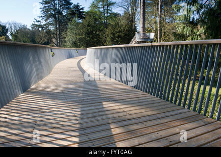 Treetop walkway at Westonbirt Arboretum, Gloucestershire, England - Stock Photo