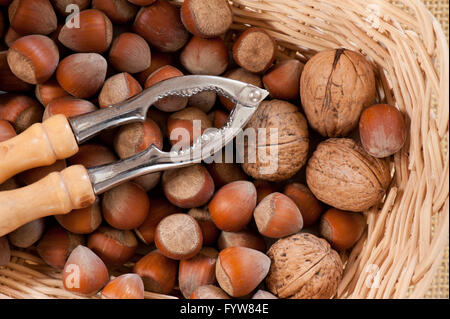 Walnuts with hazelnuts and nutcracker, nuts in brown whole shells, food lying in wicker bowl basket, view from above, - Stock Photo