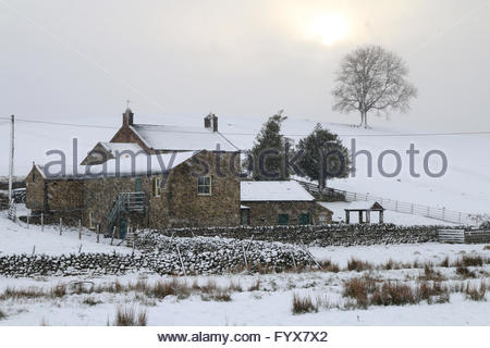 Holwick, Middleton-in-Teesdale, Co Durham, UK. 29th April 2016. UK Weather: As the snow falls over Low Way Farm - Stock Photo