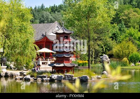 Chinese Garden, Gardens of the World, Erholungspark Marzahn, Marzahn, Marzahn-Hellersdorf, Berlin, Germany / Garden - Stock Photo