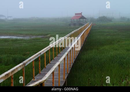 Bridge through grass - Stock Photo