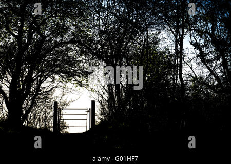 Footpath metal gate and hedgerow silhouette in the Oxfordshire countryside. England - Stock Photo