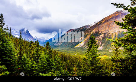 Astoria River Valley viewed from the road to Mount Edith Cavell in Jasper National Park in the beautiful Canadian - Stock Photo