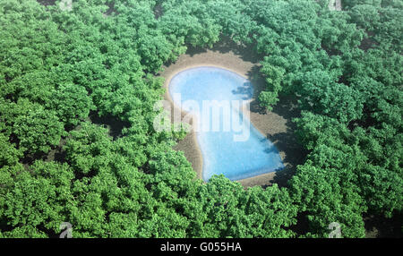 small keyhole shaped pond surrounded by a forest - Stock Photo