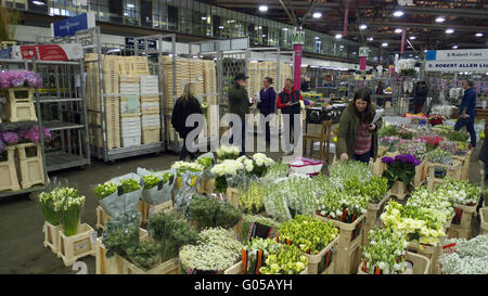 Scene at New Covent Garden Market, London Stock Photo: 103380564 - Alamy