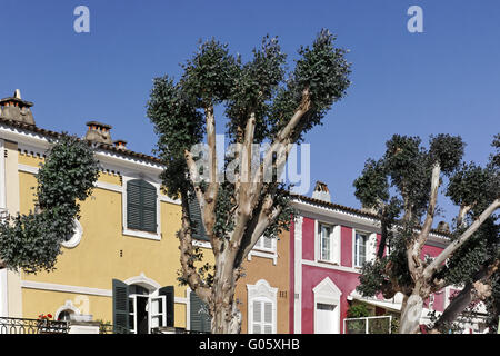 Port Grimaud, plane trees before colorful houses - Stock Photo