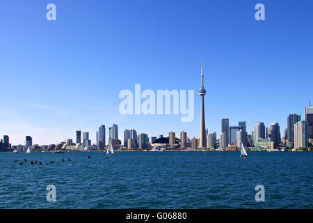 Geese and sailboats in Toronto - Stock Photo