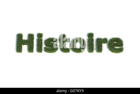 History: Series Fonts out of realistic grass Language FR (Histoire) - Stock Photo