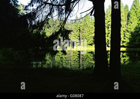 at a lonely idyllic Black Forest lake in Germany - Stock Photo