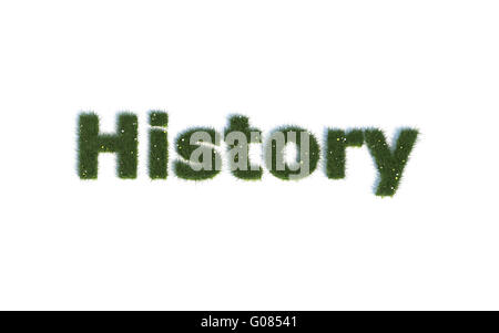 History: Series Fonts out of realistic grass Language E - Stock Photo