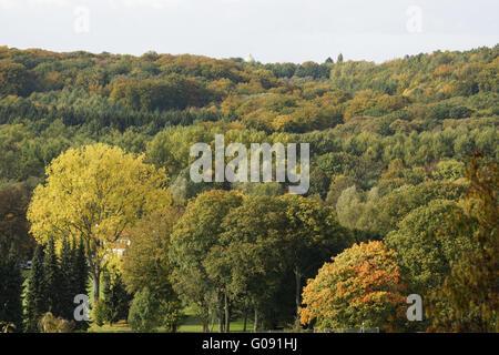 Autumnally atmosphere , Baldeneysee, Essen, German - Stock Photo