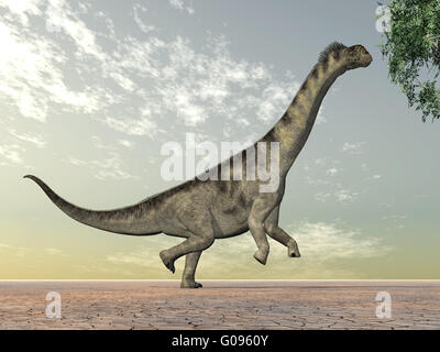 Dinosaur Camarasaurus - Stock Photo