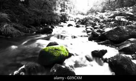 haslach canyon - Stock Photo
