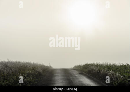 Path between two fields on a cloudy morning - Stock Photo
