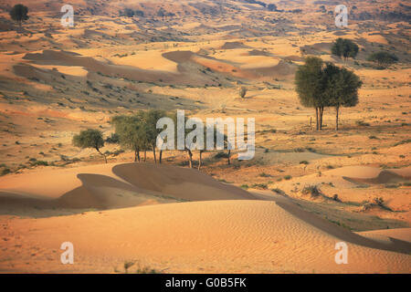 Desert rub al khali - Stock Photo