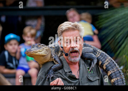 An educator gives a talk to visitors to the Australian Reptile Park, with an Alligator on his - Stock Photo