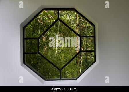 A chinese style window in garden with trees and plants - Stock Photo