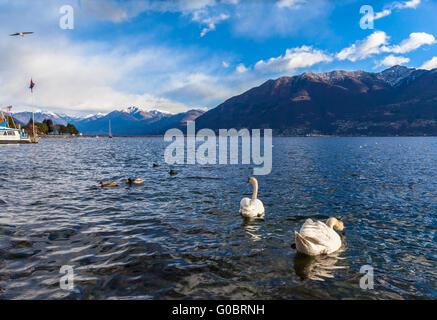Beautiful view of Maggiore Lake and the Alps from Locarno in Winter, Canton of Ticino, Switzerland. - Stock Photo