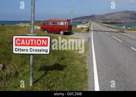 Otters crossing, Eriskay, Outer Hebrides, Scotland - Stock Photo