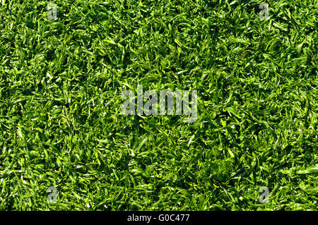 Fake Grass used on sports fields for soccer, baseball, golf and football - Stock Photo