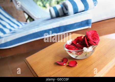 2 deck-chairs with striped towels and a rose in th - Stock Photo