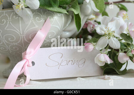 Closeup apple blossom flowers in vase with gift ca - Stock Photo