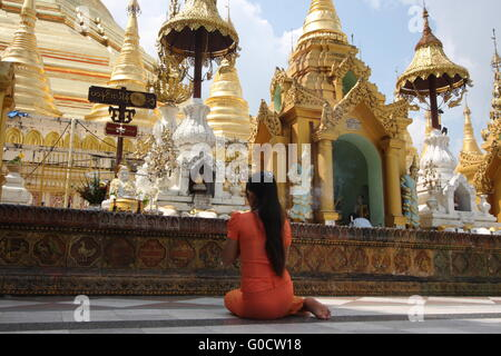 A young woman sits in prayer in front of a shrine at Shwedagon Pagoda, Yangon, Burma. - Stock Photo