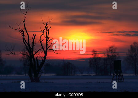 Bavarian winter landscape at dawn with deer stand - Stock Photo